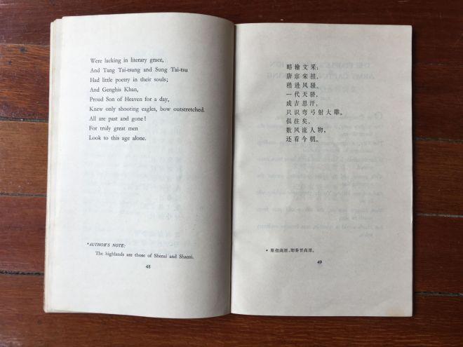 snow poem 2