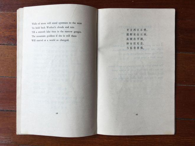 swimming poem 2